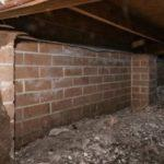 Do You Know What Condition Your Crawl Space Is In?