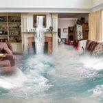 How Long Does it Take to Dry Water Damage?
