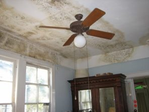 C:\Users\USER\Desktop\Files\writing job\The Vine Productions\New Client Job\October 2021\91492-0209CK\800px-Mold_on_Ceiling_on_House_on_Dublin_Street_New_Orleans_after_Katrina.jpg